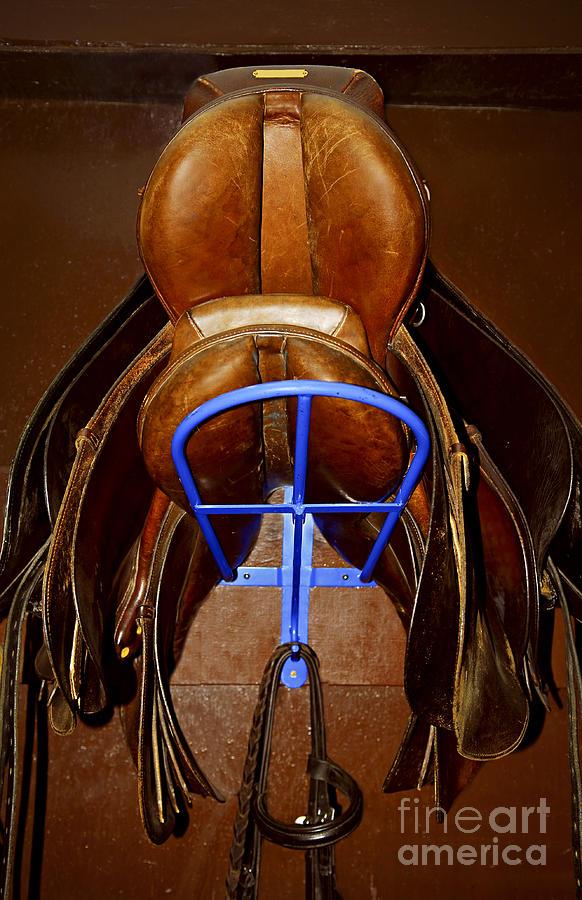Saddle Photograph - Saddles by Elena Elisseeva