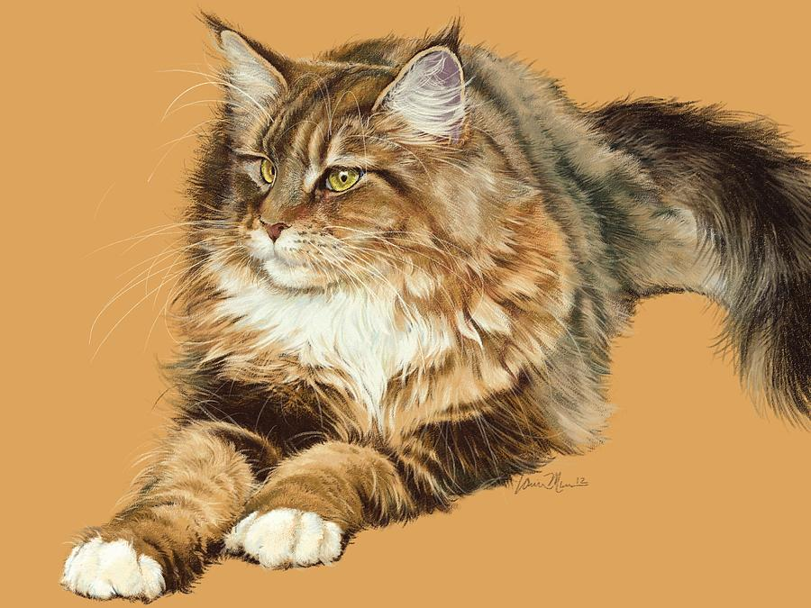 Cat Drawing - Sadie by Laurie Musser