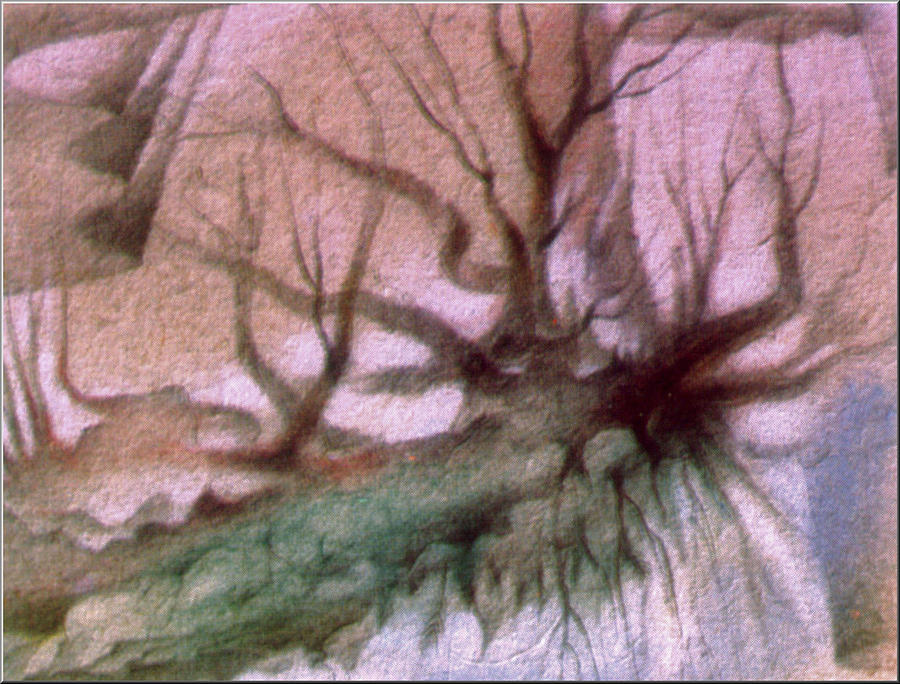 Hanging Roots Drawing - Sagada Hanging Roots 1982 by Glenn Bautista
