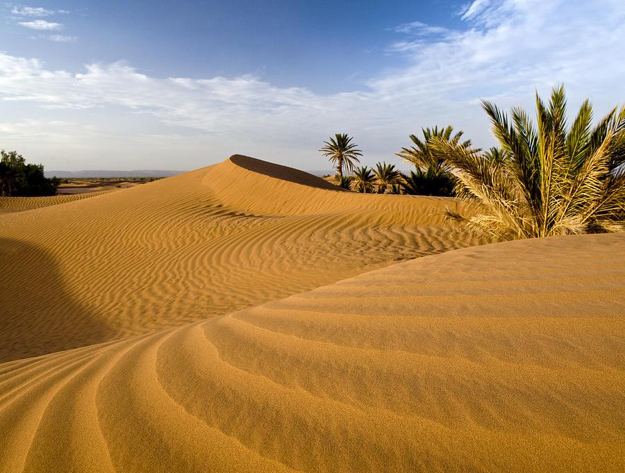 Horizontal Photograph - Sahara Desert At Mhamid, Morocco, Africa by Ben Pipe Photography