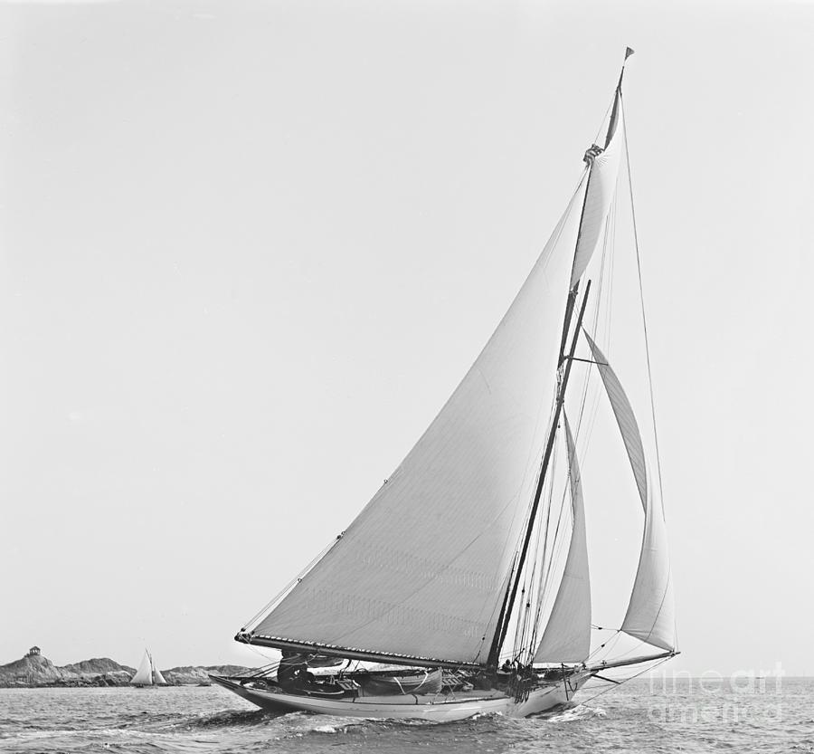 Yacht photograph sailboat wayward 1890 bw by padre art
