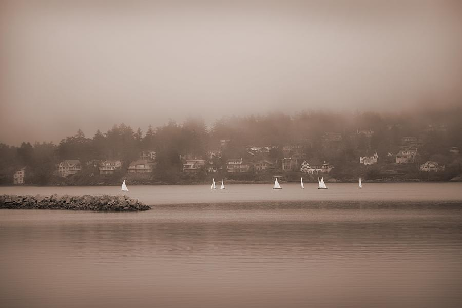 Vancouver Island Photograph - Sailboats In Victoria, British Columbia by Misty Bedwell