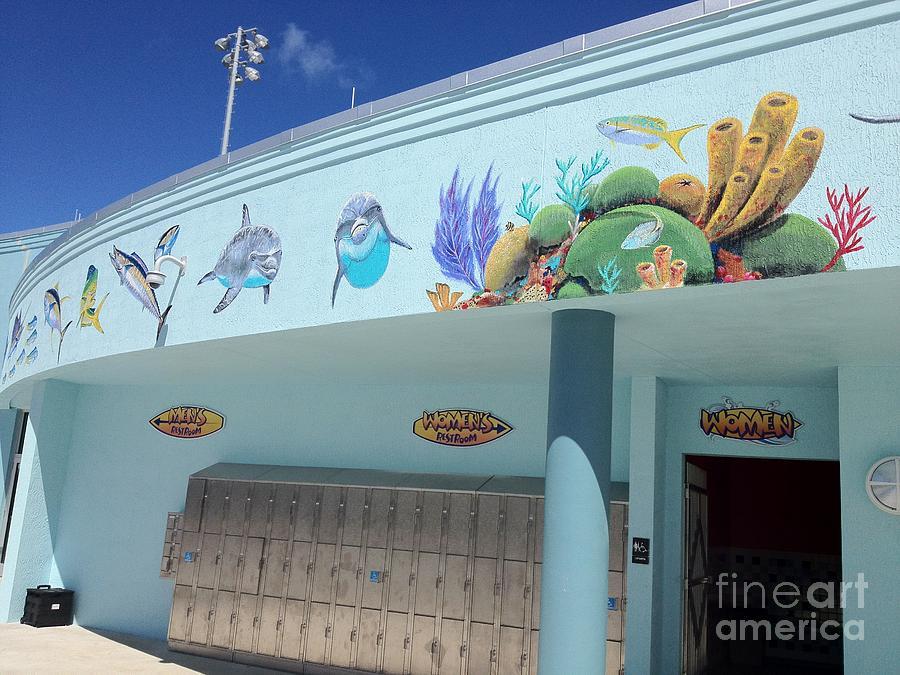 Dolphin Painting - Sailfish Splash Park 4 by Carey Chen