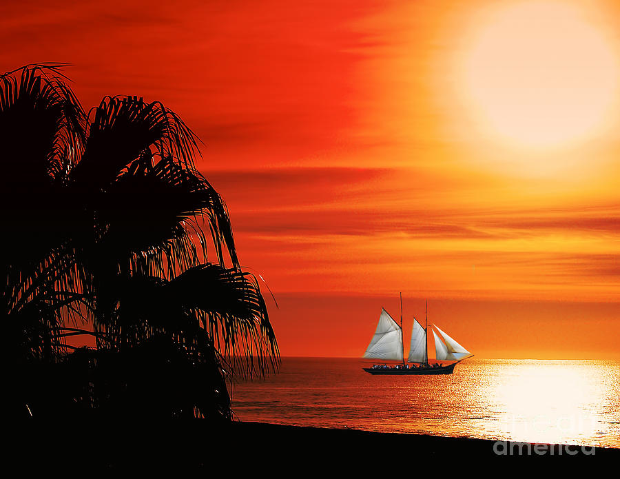 Boat Photograph - Sailing In Mexico by Billie-Jo Miller