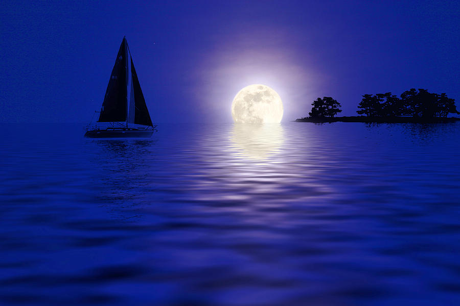 Sailing Into The Moonlight Photograph by Cindy Haggerty