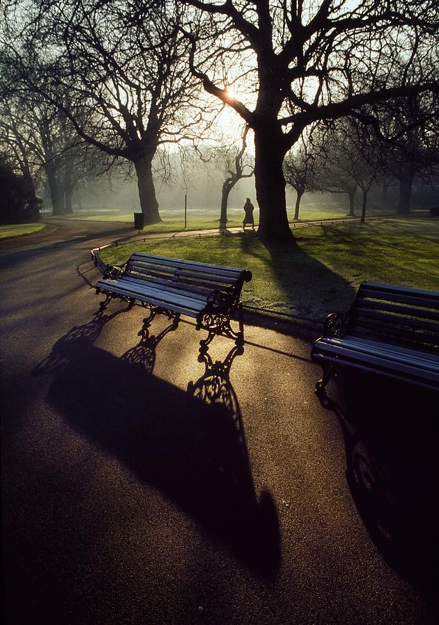 Beauty In Nature Photograph - Saint Stephens Green, Dublin, Co by The Irish Image Collection
