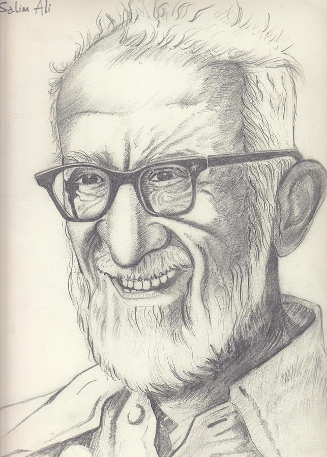 Sketch Drawing - Salim Ali by Deepti Aggarwal