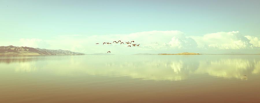 Horizontal Photograph - Salt Lake by See More On Www.rafaelpixphoto.com