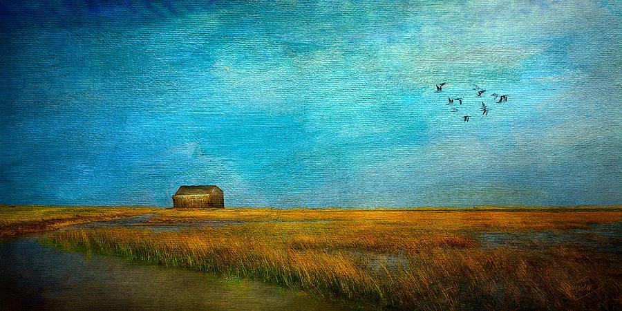 Sea Mixed Media - Salt Marsh by Michael Petrizzo