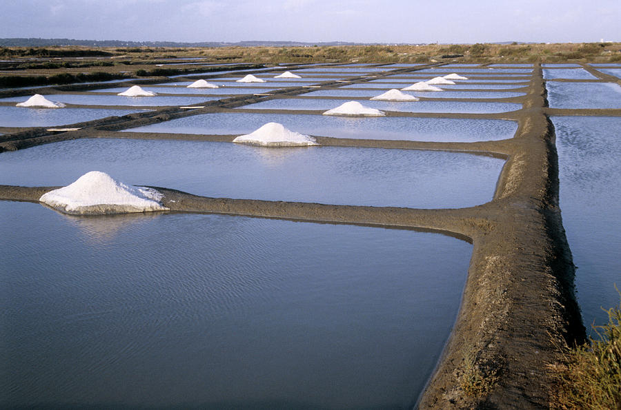 Mineral Photograph - Salt Pans by Veronique Leplat