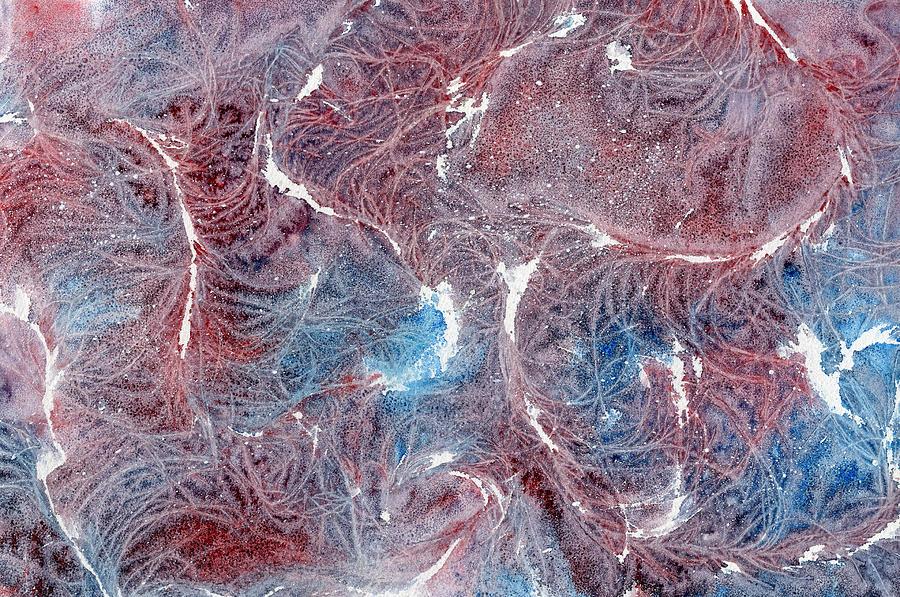 Salt Painting - Salty Lashes by Marsha Elliott