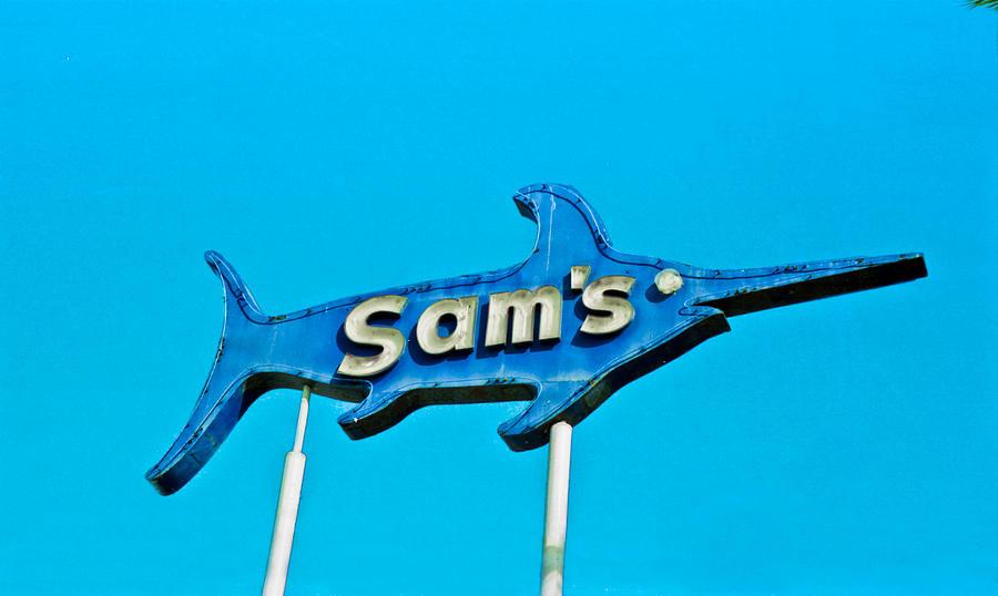 Fish Photograph - Sams by Matthew Bamberg