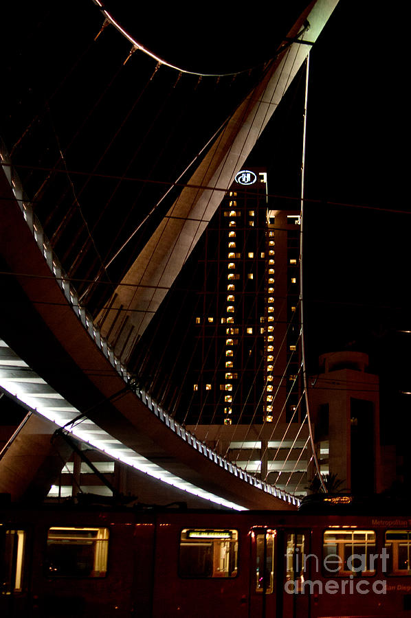 California Digital Art - San Diego Lights At Night by Carol Ailles