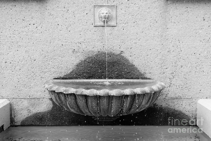 Black And White Photograph - San Francisco Crocker Galleria Roof Garden Fountain - 5d17894 - Black And White by Wingsdomain Art and Photography