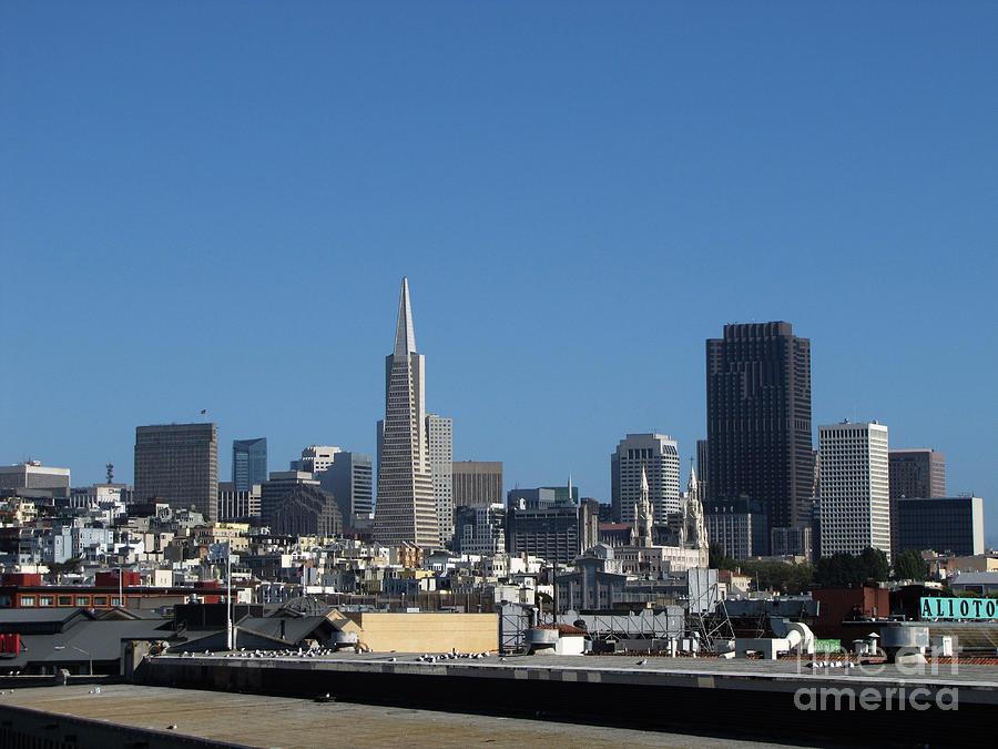 San Francisco Photograph - San Francisco by Serena Ballard