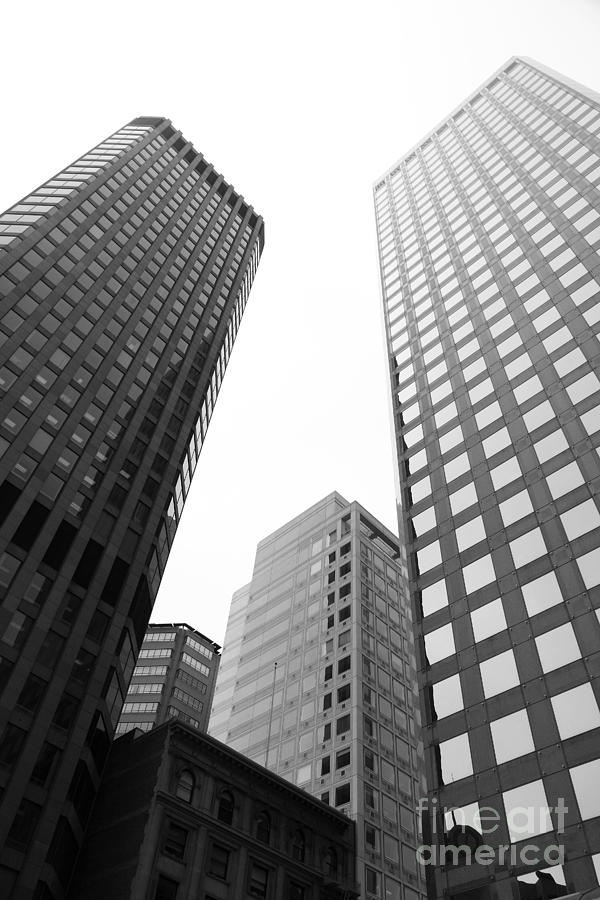 San Francisco Tall Buildings In The Financial District ...