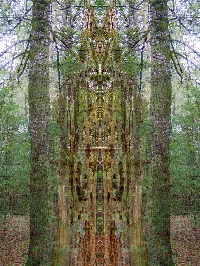 Spiritual Digital Art - Sanctuary by Lynzi Wildheart