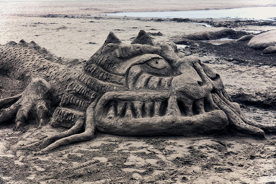 Sand Photograph - Sand Dragon Sculputure by Garry Gay
