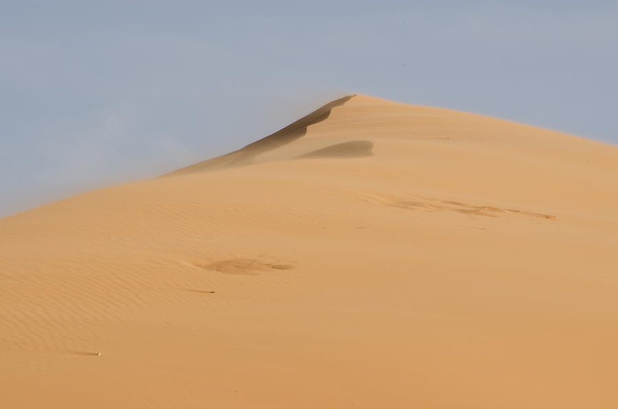 Coral Pink Sand Dunes Photograph - Sand Dune by Heather Applegate