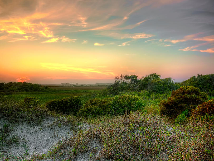 Sand Dunes And Beach Grass  Photograph by Jenny Ellen Photography
