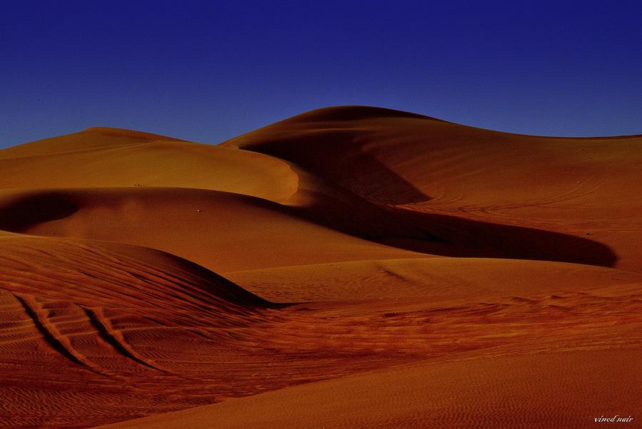 Photograph - Sand Dunes by Vinod Nair