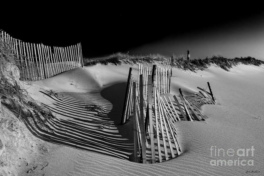 Beach Landscape Photograph - Sand Fence by Jim Dohms