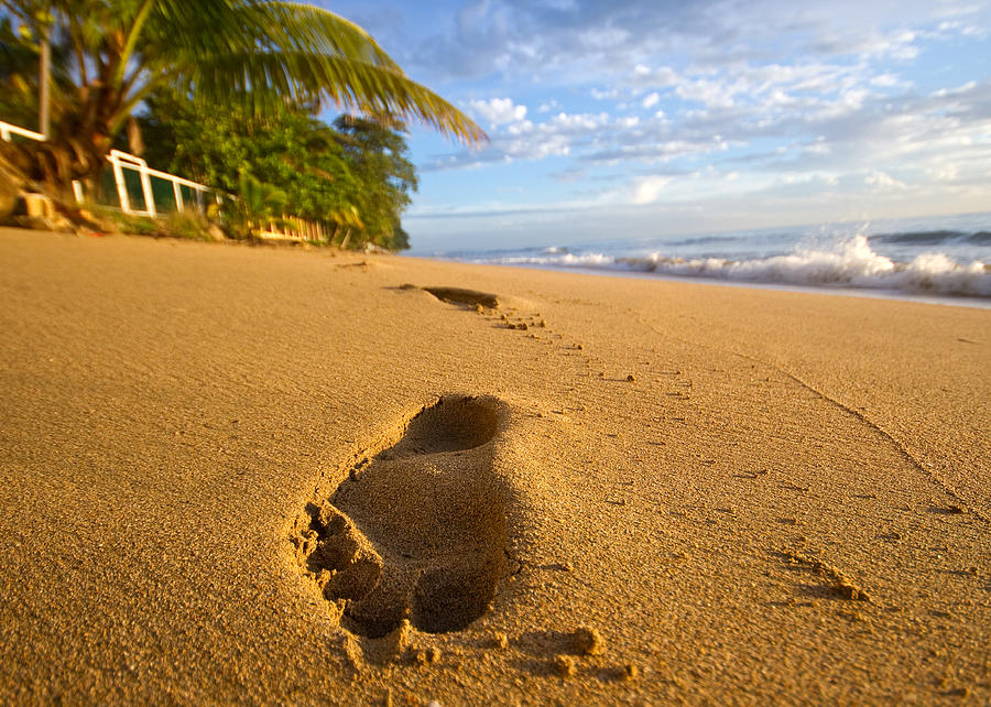 Puerto Rico Photograph - Sand Prints by Tim Fitzwater
