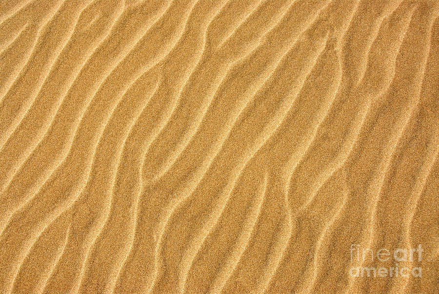 Sand Ripples Abstract Photograph by Elena Elisseeva