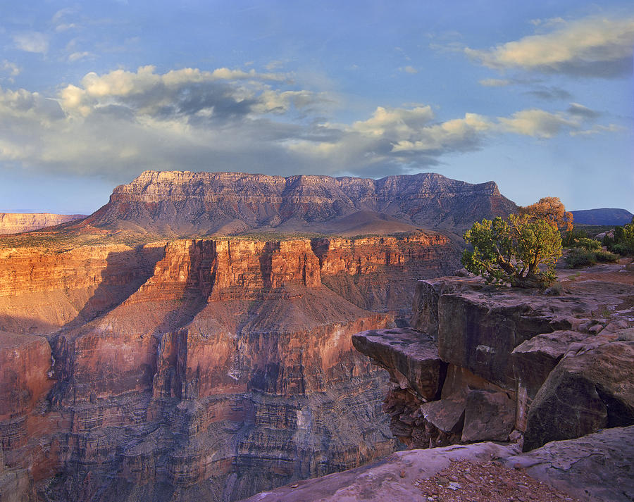 Sandstone Cliffs And Canyon Seen Photograph by Tim Fitzharris