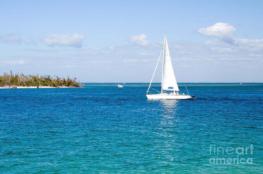 Sanibel Island Florida Ocean Sailboat Photograph By Elite
