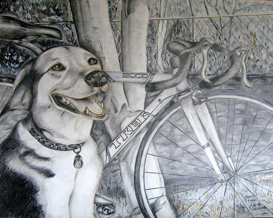 Smile Drawing - Sapphire And Bike by HHolly Bazmi