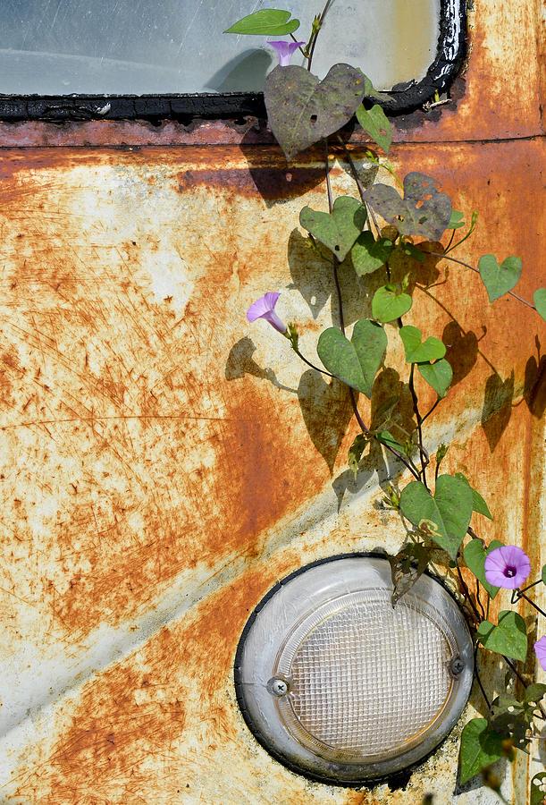 Volkswagen Van Photograph - Say Goodbye by Carolyn Marshall