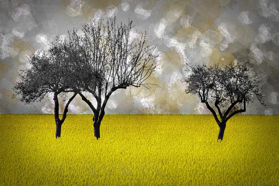 Reps Photograph - Scenery-art Landscape by Melanie Viola