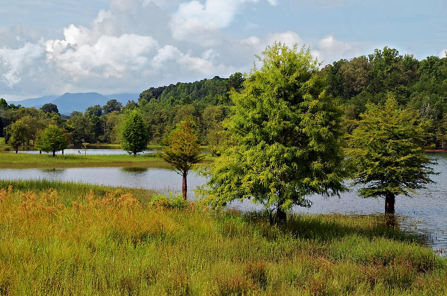 Lake Photograph - Scenic Lake With Mountains by Susan Leggett