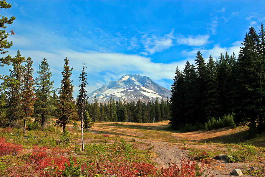 Mount Hood Photograph - Scenic Mt. Hood In Oregon by Athena Mckinzie