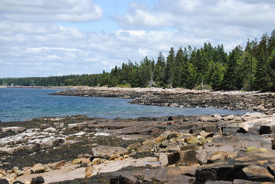 Maine Photograph - Schoodic Peninsula  by Steven Scott