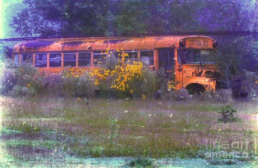 School Photograph - School Bus Out To Pasture by Judi Bagwell