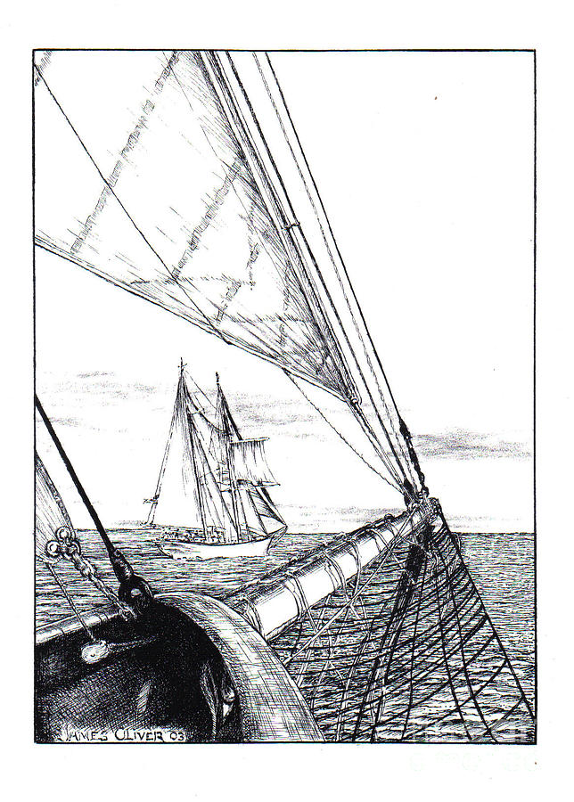 Schooners by James Oliver