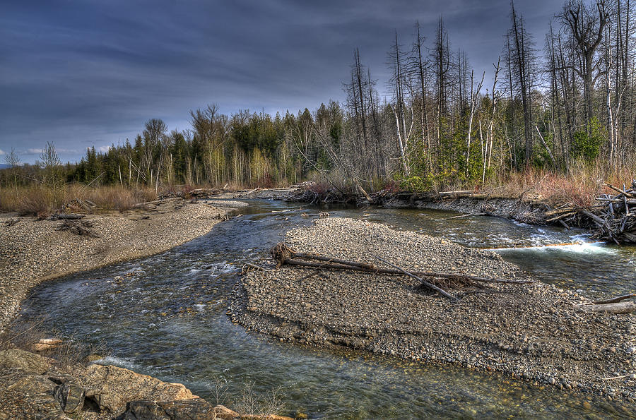 Creek Photograph - Scotch Creek Bc by Sandra Sigfusson