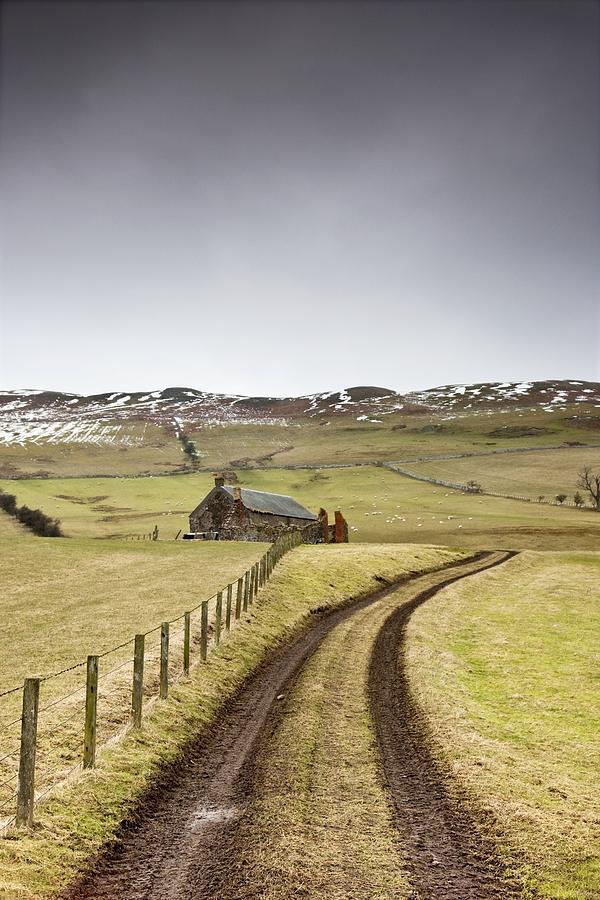 Fields Photograph - Scottish Borders, Scotland Tire Tracks by John Short