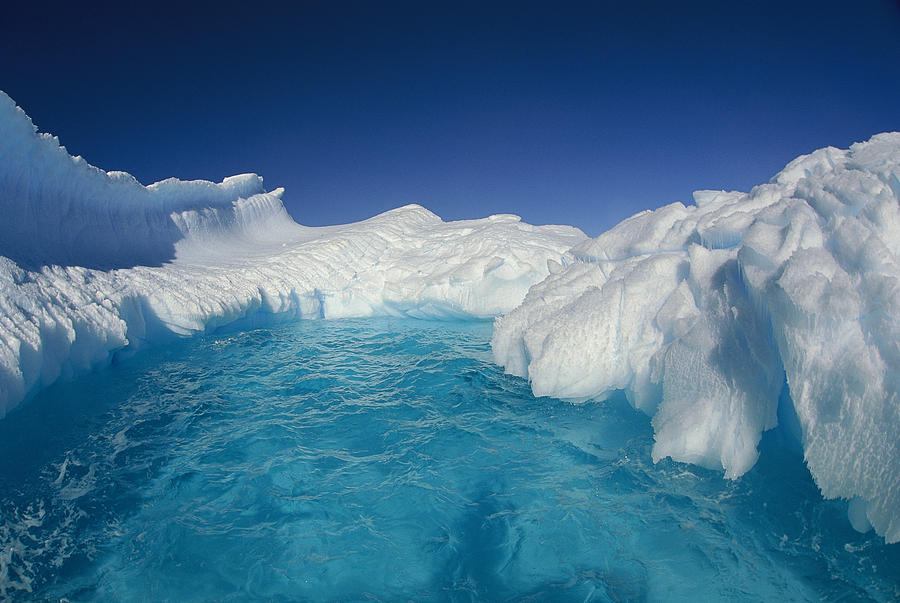 Sculpted Iceberg, Terre Adelie Land Photograph by Colin Monteath