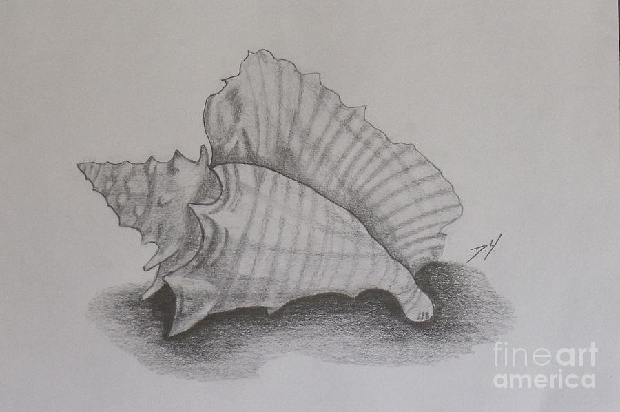 Nature Painting - Sea Shell by Debra Piro