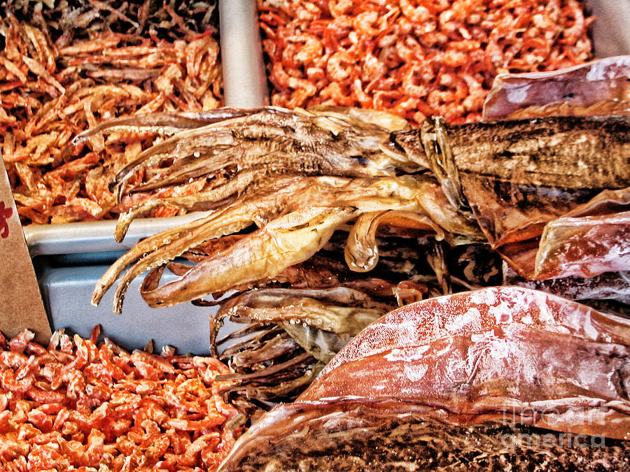 Squid Photograph - Seafood For Sale 2 In Chinatown by Anne Ferguson