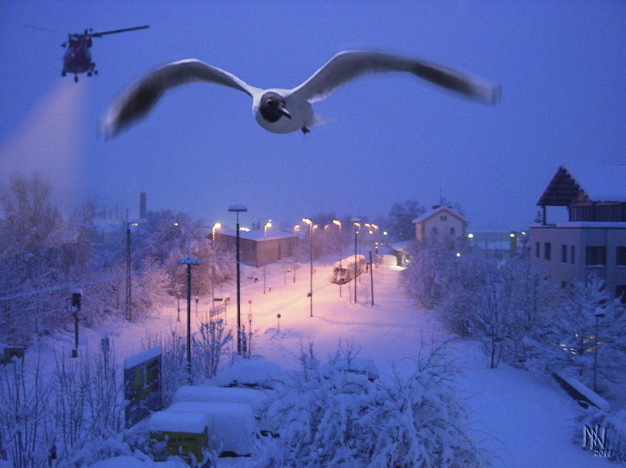 Seagull Digital Art - Seagull At Winter by Nafets Nuarb
