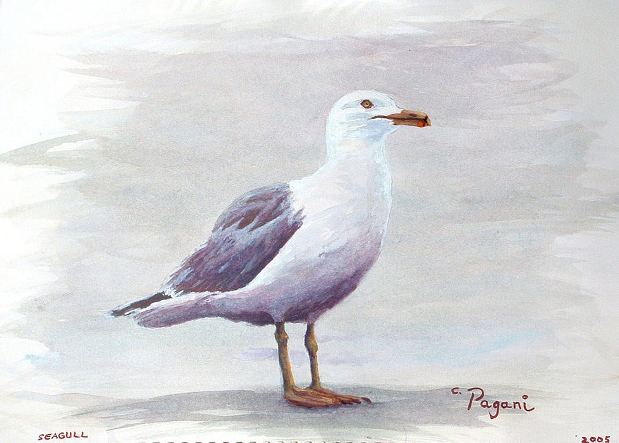 Seagull Painting By Chriss Pagani