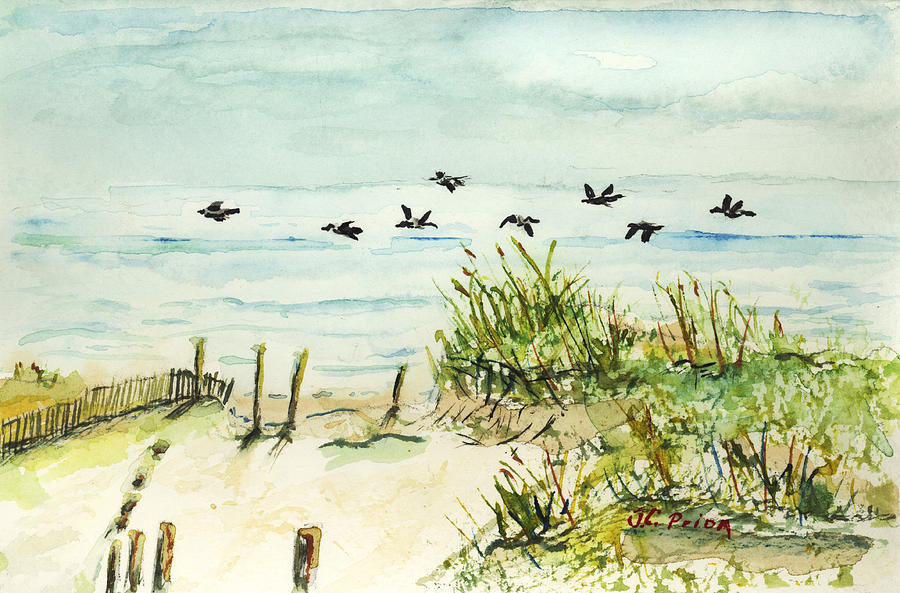 Seagulls And Sand Dunes Painting By Jc Prida