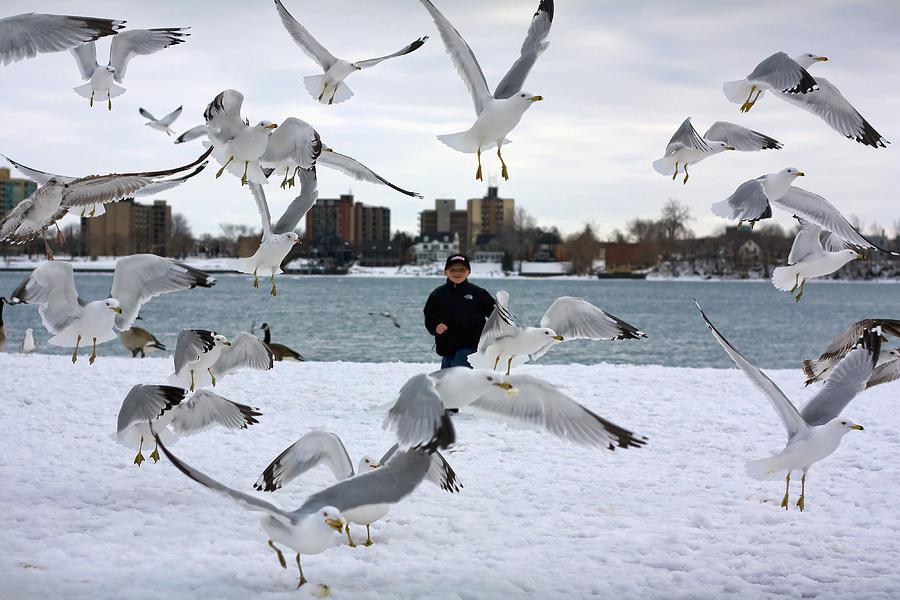 Winged Photograph - Seagulls In Flight by Gordon Dean II