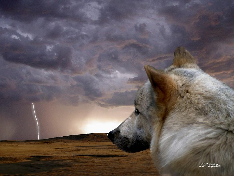 Wolves Digital Art - Searching For Home by Bill Stephens