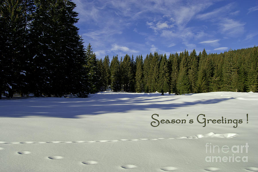 Winter Photograph - Seasons Greetings Austria Europe by Sabine Jacobs