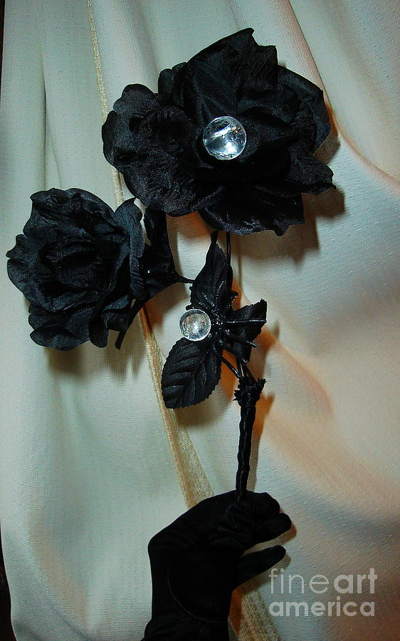 Black Rose Photograph - See Into Darknesss Beauty by Jozy Me